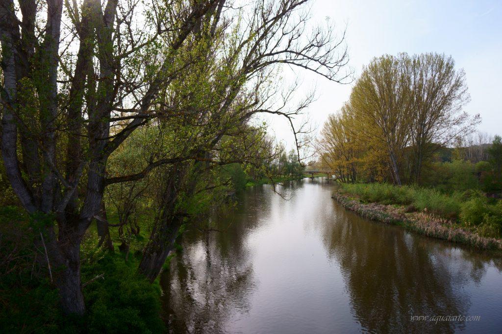 Река Струма през пролетта  в границите на Невестино