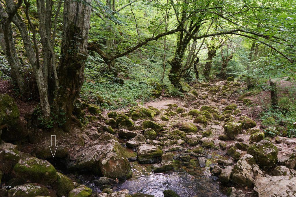 Изворът на река Младежка