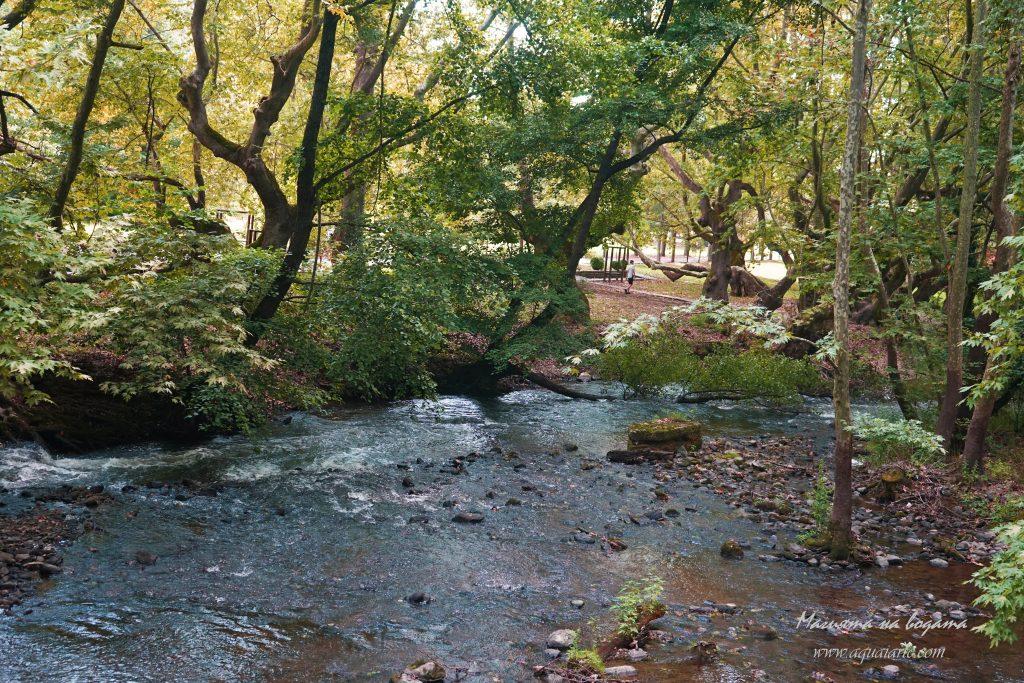 река Струмешница