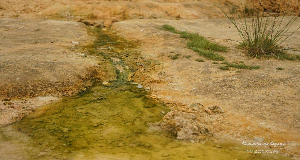 Лечебна вода в Рупите