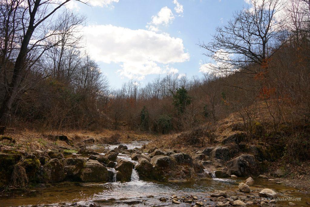 Река Лопошница малко над водопад Скока